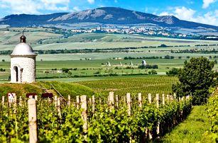 Jižní Morava: jídlo, wellness i vinařská akademie