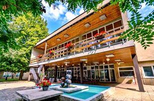 Brno v Hotelu Fontána *** u přehrady s polopenzí, wellness a půjčením kol