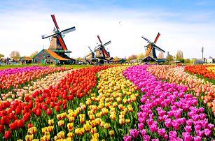 Květinový park Keukenhof s návštěvou Amsterdamu   1 noc se snídaní   4denní poznávací zájezd do Holandska