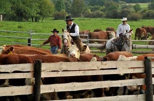 Pobyt na ranči pro dva