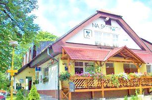 Podhůří Beskyd v hotelu v rekreační oblasti města Nový Jičín s polopenzí a vstupem do bazénu