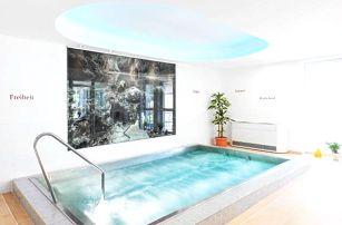 Rakouské Alpy: Hotel Payerbacherhof ***+ u skiareálů s polopenzí a wellness