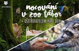Nocování v ZOO Tábor včetně možnosti stát se ošetřovatelem zvířat