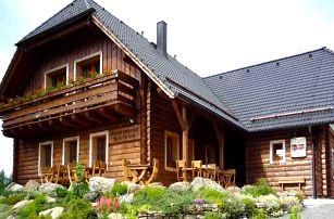 Pobyt v šumavském penzionu s wellness a polopenzí