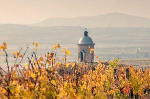 Pobyt na Pálavě: polopenze a neomezeně vína