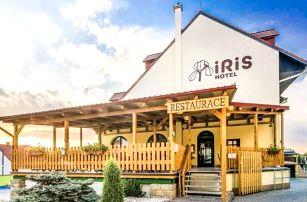 Pálava mezi vinicemi a sklípky: Wellness Hotel Iris *** se snídaněmi a vířivkou