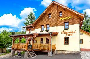 Krušné hory u Karlových Varů: penzion Hamerská Jizba u lázní s polopenzí