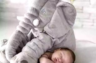 Plyšový slon Aaron