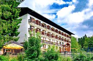 Šumava aktivně v Hotelu Stella *** s polopenzí, wellness, zapůjčením kol, koloběžek či holí