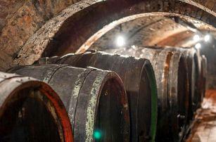 Posezení u vína i řízená degustace ve Velkých Pavlovicích