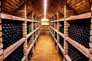 Vinařský pobyt na jižní Moravě u Znojma ve Vinařství Lintner s řízenou degustací, občerstvením a snídaněmi