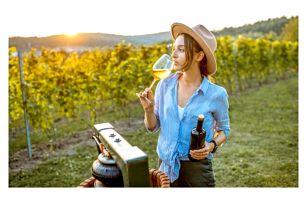 Jižní Morava: Degustační vinařský pobyt u zámku Valtice v Penzionu Rendezvous se snídaní a ochutnávkou vín