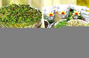 Třípatrová biomiska na klíčení a 30 druhů semen