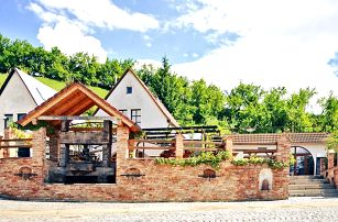 Pobyt u vinohradu na jižní Moravě: polopenze i víno
