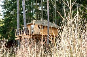 Treehouse U rybníka