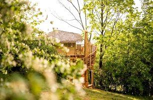 Treehouse Amálka